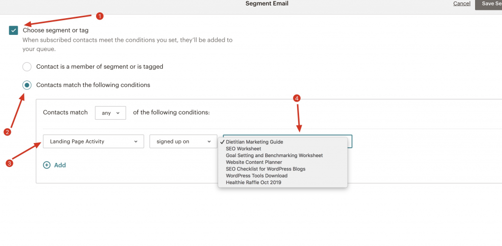 Choose Segment or Tag Page Screenshot in Mailchimp | Whitney Bateson Digital Strategy